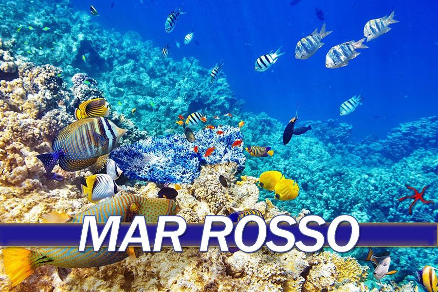 Offerte Vacanza Mar Rosso